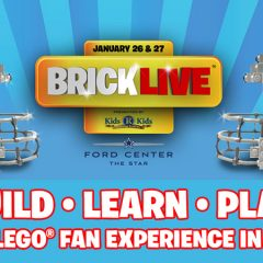 BRICKLIVE Coming To The USA