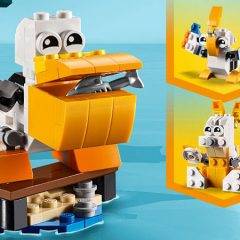 Free LEGO Creator 3-in-1 Pelican Set