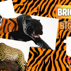 BRICKLIVE Big Cats Comes To Twycross Zoo