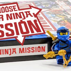 LEGO NINJAGO Choose Your Ninja Mission Book Review