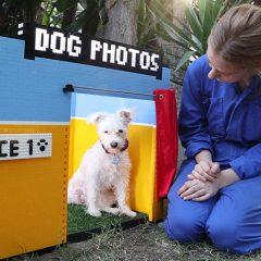 LEGO MINDSTORMS Creates Dog Selfie Booth